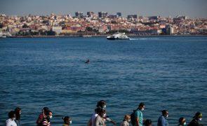 Transtejo recebe visto prévio do TdC e avança com compra de 10 navios elétricos