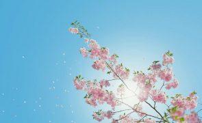 Meteorologia: Previsão do tempo para segunda-feira, 22 de março