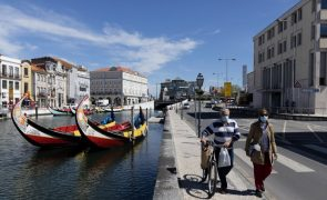 Covid-19: Eletrificação pode ajudar a relançar atividade dos moliceiros na Ria de Aveiro