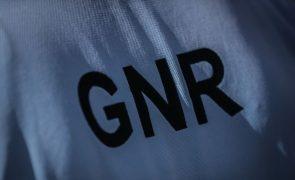 GNR detém em Beja suspeito de tráfico e apreende quase 900 doses de haxixe