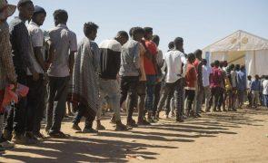 ACNUR confirma que campos de refugiados eritreus em Tigray foram