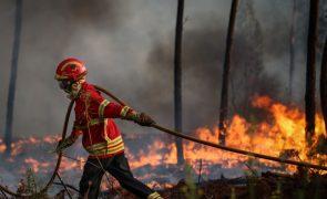 Mais de 1.200 incêndios e 5.477 hectares de área ardida desde início do ano