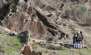 Parque Arqueológico do Côa melhora acessos e faz arranjos para a reabertura a 5 de abril