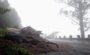 Mau tempo: Tempestade provoca apagão geral na ilha da Madeira