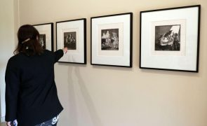 Museu Tate Britain inaugura retrospetiva de Paula Rego no verão