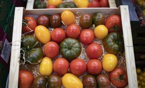 Feira Nacional da Agricultura decorre entre 09 e 13 de junho em Santarém