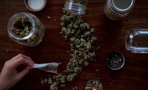 Cerca de 30% dos adultos já consumiu drogas ilícitas pelo menos uma vez