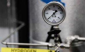 Governo e BEI cooperam para acelerar investimentos no hidrogénio