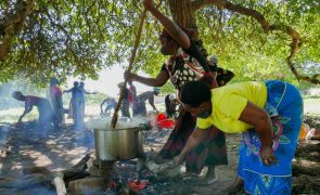 Moçambique/Ataques: No feriado delas, mulheres esquecem festa e cozinham para deslocados