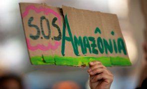 Alertas de desflorestação na Amazónia brasileira batem recorde em março