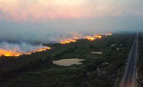 Amazónia perdeu 2,3 milhões de hectares em 2020 e teve terceiro pior registo
