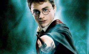 9 insinuações sexuais que você não reparou em Harry Potter