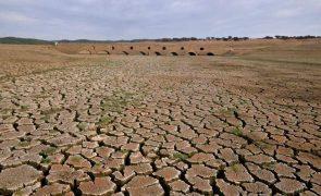 Governador considera grave situação de mais de 41 mil pessoas nos Gambos devido à seca