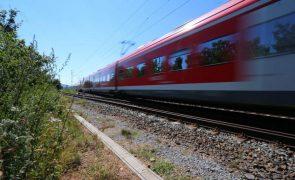 Governo diz que corredores da Ferrovia 2020 estarão todos em obras este ano