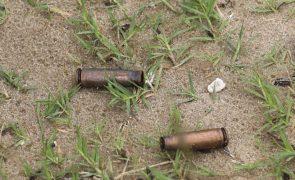 Moçambique/Ataques: Forças governamentais abateram 41 insurgentes em confrontos após Palma
