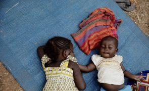 Vacina protegeu contra a malária 650.000 crianças no Gana, Quénia e Maláui