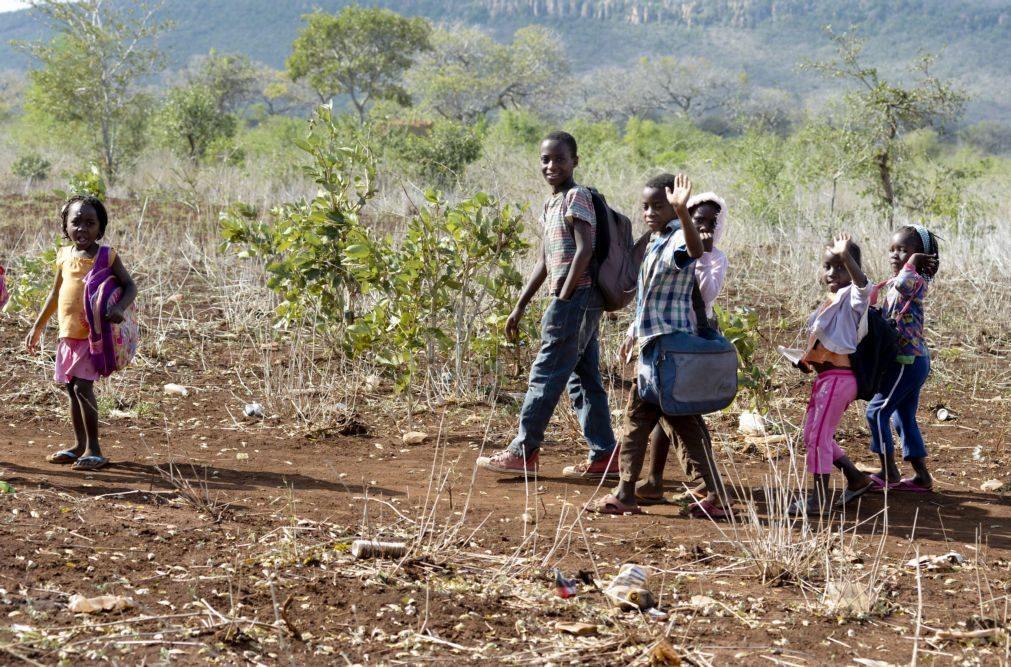 Estudo diz que 26% das crianças que morrem em Moçambique sofrem de desnutrição