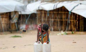 Mais de 950.000 pessoas em Moçambique precisam de ajuda alimentar urgente - PAM