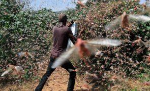 UE disponibiliza 149 ME em ajuda humanitária para o Corno de África