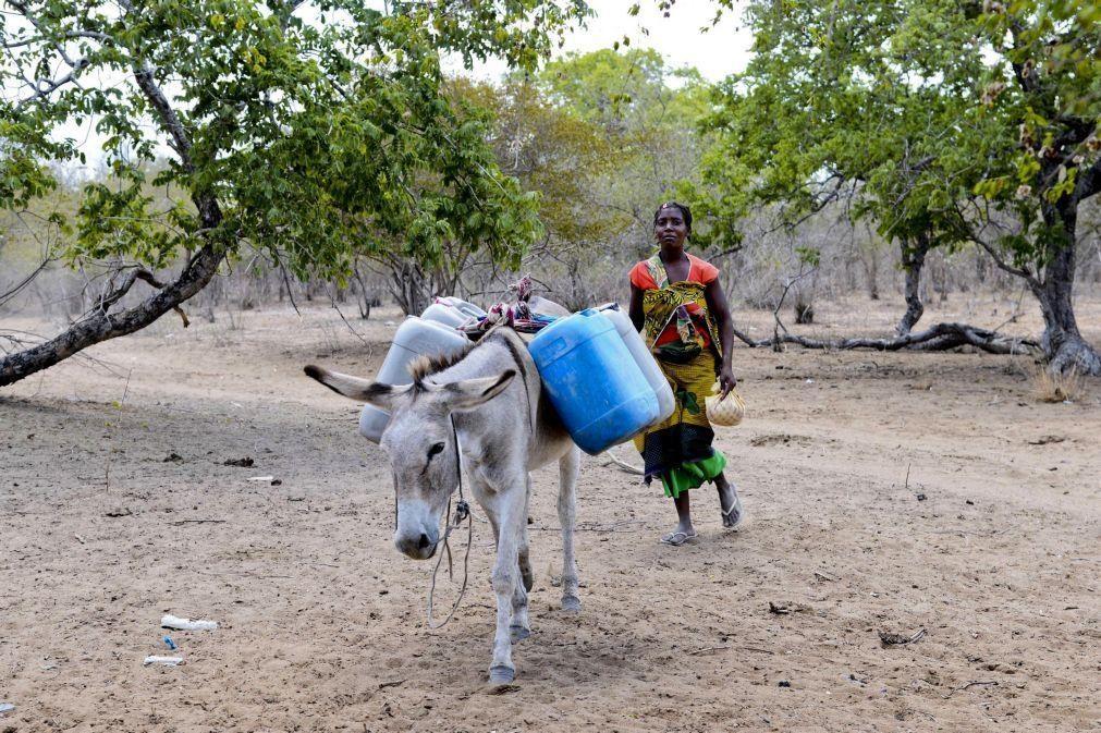 PAM prolonga por mais quatro meses ajuda humanitária a 38.780 pessoas no centro de Moçambique