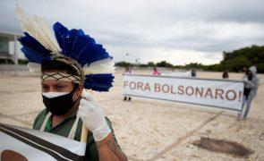 ONG diz que Jair Bolsonaro fez promessas vazias sobre proteger a Amazónia