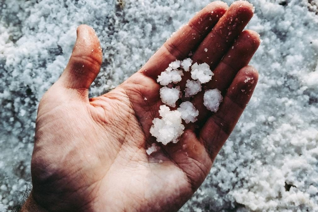 Meteorologia: Previsão do tempo para segunda-feira, 26 de abril