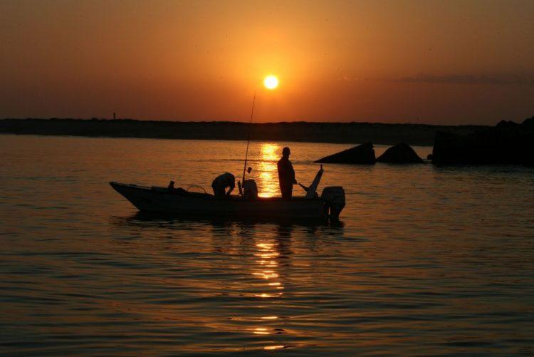 Autoridades começam limpeza de mancha de origem desconhecida na Ria Formosa
