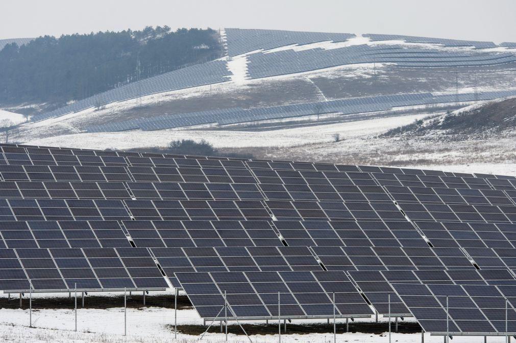 Zero considera que apenas um em nove projetos de centrais solares é exemplo a seguir