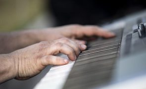 Festival Metamorfose com sete finalistas entre 82 projetos musicais a concurso