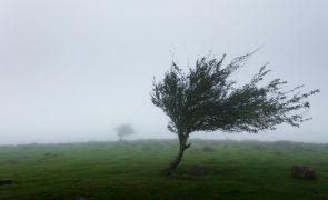 Meteorologia: Previsão do tempo para sábado, 1 de maio