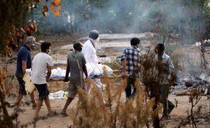 Covid-19: Índia com quase quatro mil mortos e 414.188 casos em 24 horas