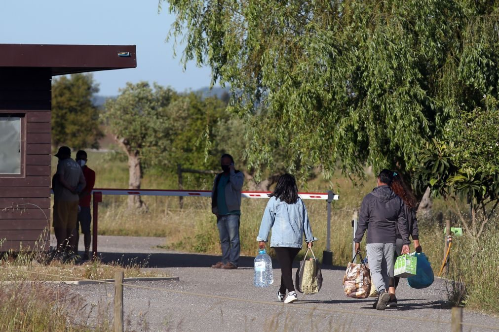 Covid-19: Seis trabalhadores agrícolas do Zmar realojados hoje por empresas