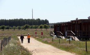Covid-19: Tribunal já emitiu notificação ao Governo sobre providência cautelar do Zmar