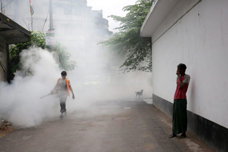 Cabo Verde reforça combate a mosquitos após confirmação de casos de dengue