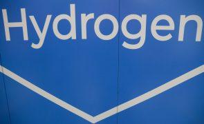 REN prevê investir 40 ME para preparar a rede de gás para hidrogénio