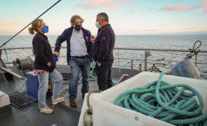 Pesca da sardinha reabre hoje após quase sete meses