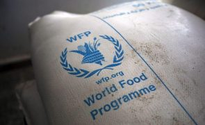 Programa Alimentar Mundial fornece ajuda a 51 mil pessoas em Gaza