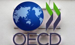 Países africanos devem apostar em investimentos que mudem as economias - OCDE