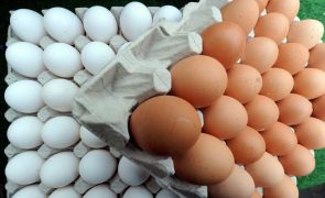 ASAE instaura processo-crime e apreende alimentos fora de prazo em Beja