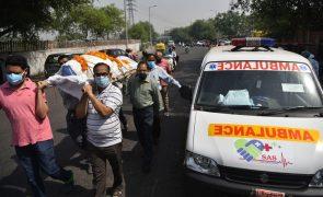 Peritos internacionais juntam-se para tentar prevenir a próxima pandemia