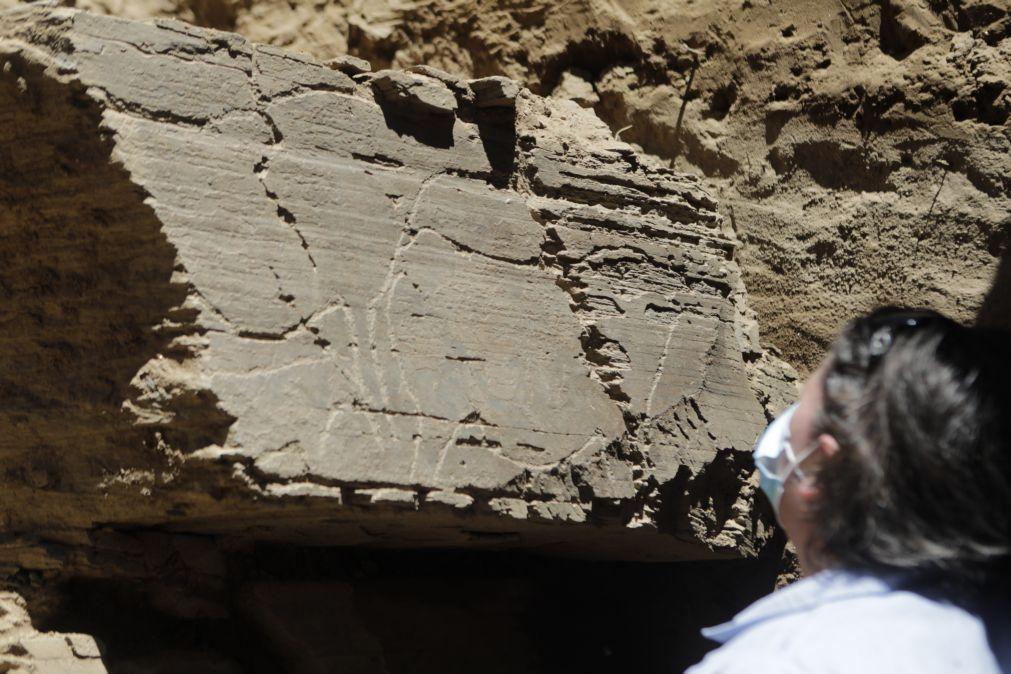 Investigadores admitem ter descoberto no Côa o maior painel de arte rupestre ao ar livre
