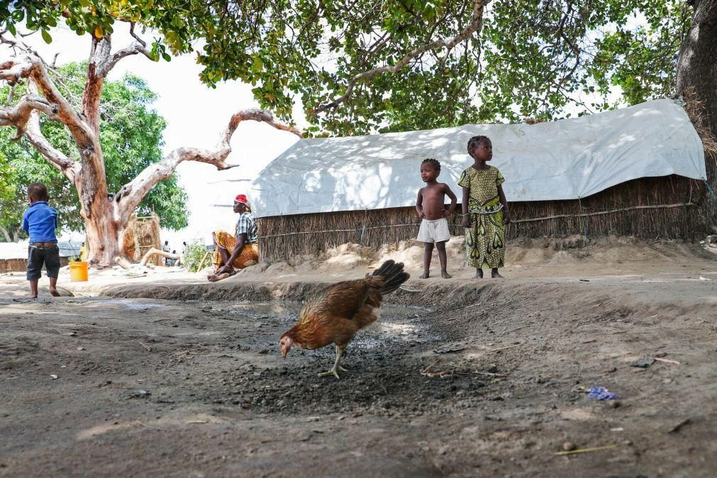 Moçambique/Ataques: Mais de 1,2 milhões precisam de ajuda médica urgente - OMS