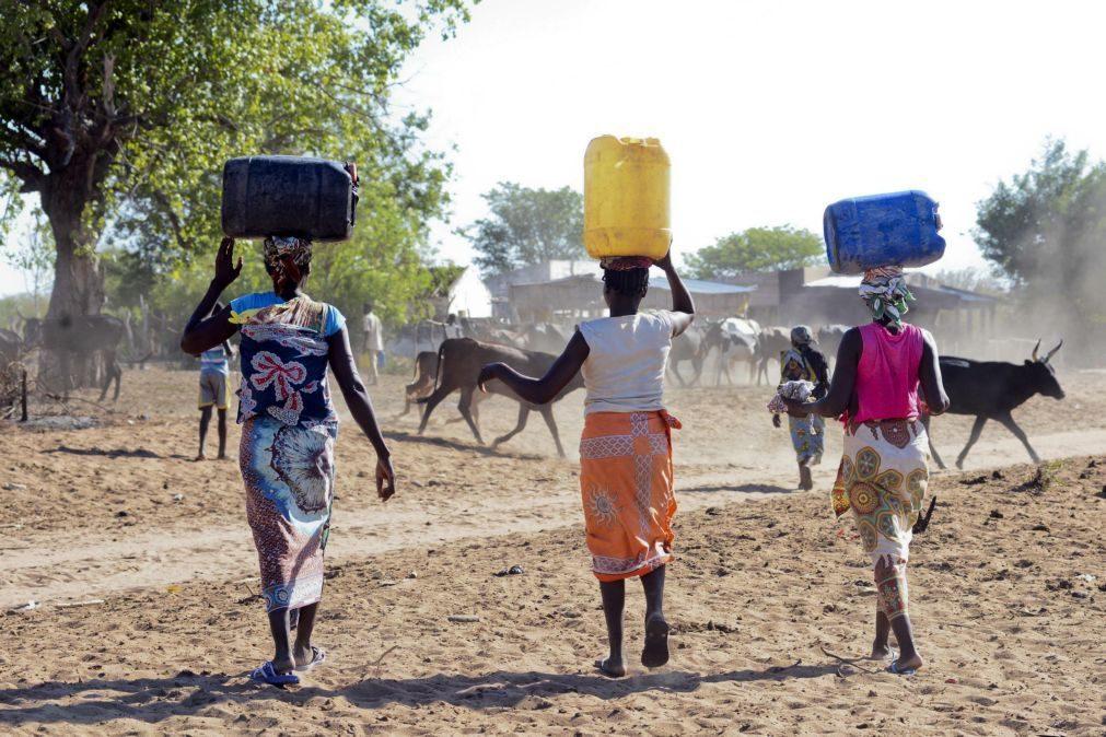 Angola estima custos de 407,8 ME para recuperar de cinco anos de seca