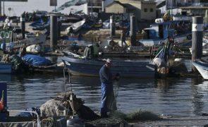 Covid-19: Apoios aos pescadores atingem 1,2 milhões de euros -- ministro do Mar