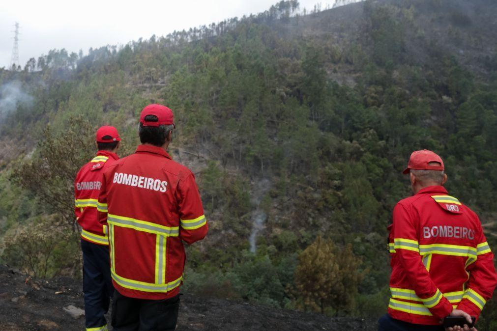 Associações de bombeiros criticam falta de fiscalização nas florestas