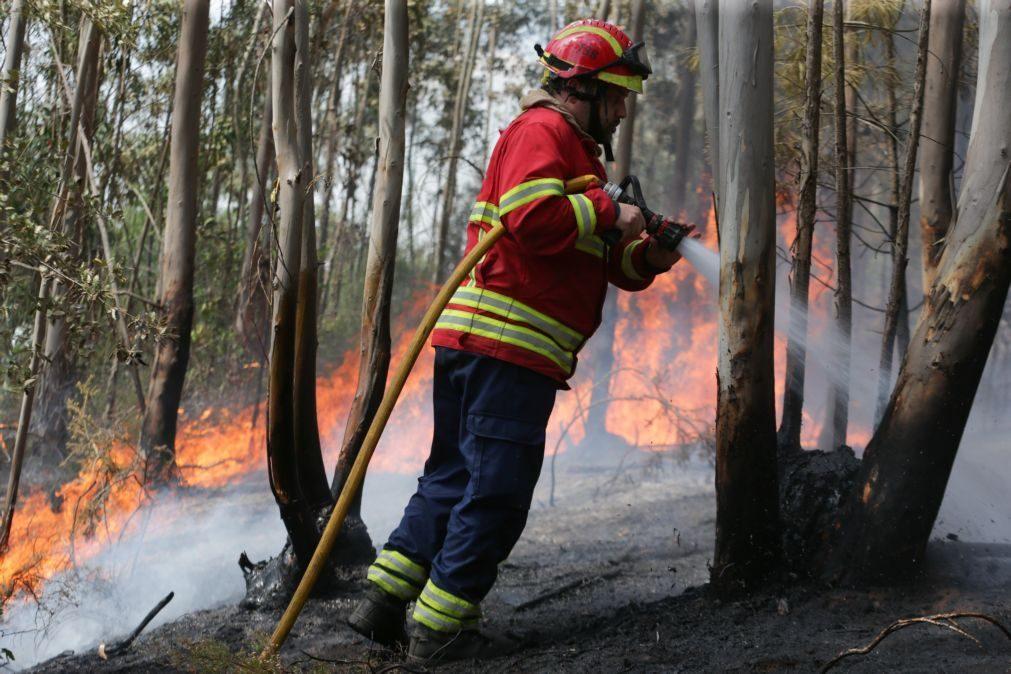 Bombeiros defendem presença de 1.200 profissionais nas florestas todo ano