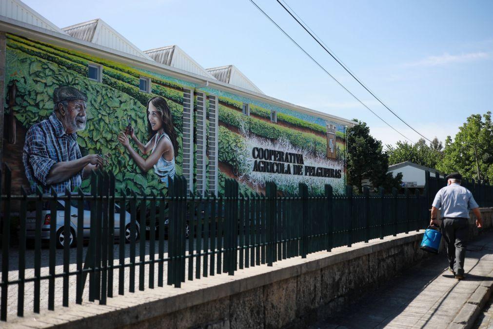 Cooperativa de Felgueiras distribui parte dos lucros por produtores e restaurantes
