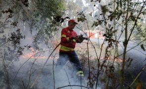 Dez concelhos de quatro distritos do país em risco muito elevado de incêndio