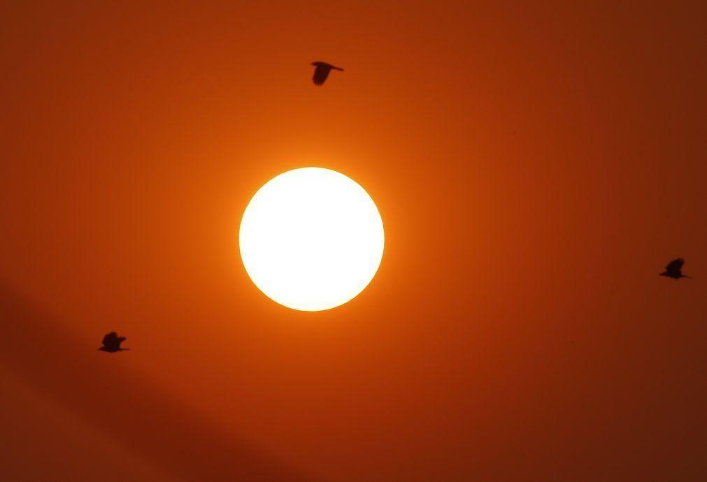 Dezassete distritos do continente com risco muito elevado de exposição aos raios UV