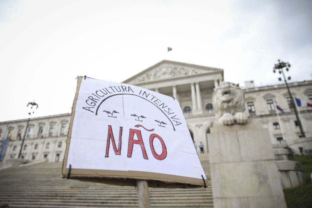 Dezenas de pessoas protestam junto ao parlamento contra agricultura intensiva no sudoeste